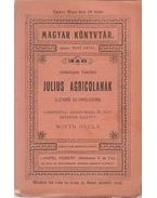 Julius Agricolanak életéről és erkölcseiről - Tacitus, Cornelius, Radó Antal