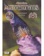Mundus Mercurius 2004/7. július - Takács Tibor