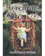 Mundus Mercurius 2006/6. június - Takács Tibor