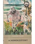 A homokzátony - Taylor, Theodore