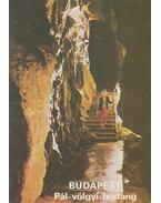 Budapest - Pál-völgyi-barlang - Temesi Ida