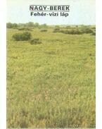 Nagy-Berek - Fehér-vízi láp - Temesi Ida