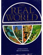 The Real World: Understanding the Forces That Shape Our Lives - Bruce Marshall, Philip Boys