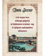 A két magyar haza elsőrangú gyógyvizei és fürdőintézetei természet- vegy, és gyógytani sajátságaikban előterjesztve - Török József