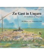 Zu Gast in Ungarn - Turós Emil