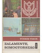 Zalamente, Somogyország - Tüskés Tibor