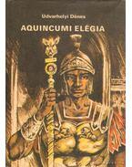 Aquincumi elégia - Udvarhelyi Dénes