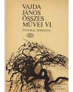 Vajda János összes művei VI. - Vajda János