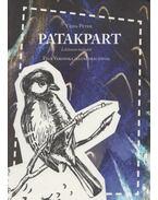 Patakpart - Vajda Péter