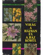 Virág a házban és a ház körül - Vécseyné Ticsénszky Marianna