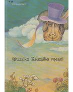 Muzsika Zsuzsika meséi - Végh György