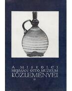 A miskolci Herman Ottó Múzeum közleményei 21. - Viga Gyula