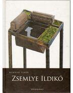 Zsemlye Ildikó - Wehner Tibor