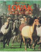 Lovak - Werner, Heidrun