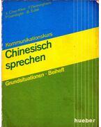 Kommunikationskurs Chinesisch sprechen - Xianghong Chen-Klein, Friedhelm Denninghaus, Peter Leimbigler, Barbara Subik