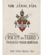 Pacem in Terris enciklikája magyar fordításban - XIII. János pápa