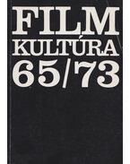 Filmkultúra 65/73 - Zalán Vince, Bíró Yvette