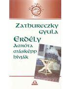 Erdély amióta másképp hívják - Zathureczky Gyula