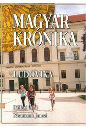 Magyar Krónika 2014/4. - Ágh István, Bencsik Gábor, Feledy Balázs, Kerényi Imre, SAYFO, OMAR - Régikönyvek