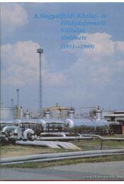 A Nagyalföldi Kőolaj- és Földgáztermelő Vállalat története (1951-1989) - Simon Béla - Régikönyvek