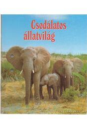 Csodálatos állatvilág 4. - Madarak; Hüllők és kétéltűek; Halak - Régikönyvek