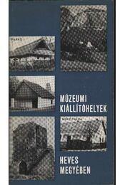 Múzeumi kiállítóhelyek Heves megyében - Bakó Ferenc, Kovács Jenő, Szabó János, Pamer Nóra, Bodgál Ferencz - Régikönyvek