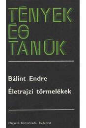 Életrajzi törmelékek - Bálint Endre - Régikönyvek