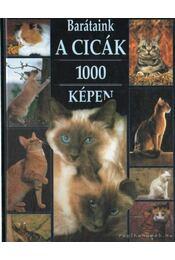 Barátaink a cicák 1000 képen - Régikönyvek