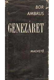 Genezáret - Bor Ambrus - Régikönyvek