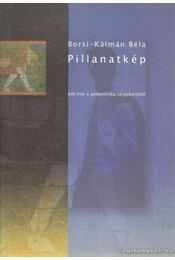 Pillanatkép - Borsi-Kálmán Béla - Régikönyvek