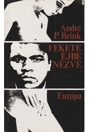 Fekete éjbe nézve - Brink, André P. - Régikönyvek