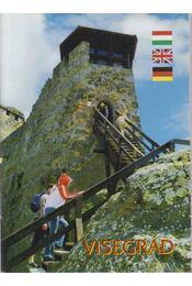 Visegrád - Buzás Gergely - Régikönyvek