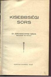 Kissebségi sors - Grosschmid Géza - Régikönyvek