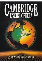 Cambridge Enciklopédia - Crystal, David - Régikönyvek