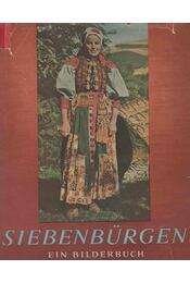 Siebenbürgen - Cs. Szabó László, Erdődi Mihály - Régikönyvek