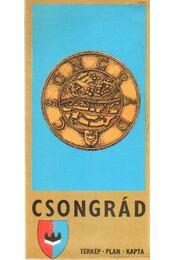 Csongrád - Régikönyvek