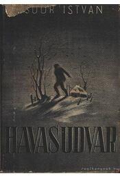 Havas udvar - Csoór István - Régikönyvek