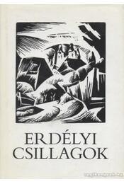 Erdélyi csillagok - Czine Mihály - Régikönyvek