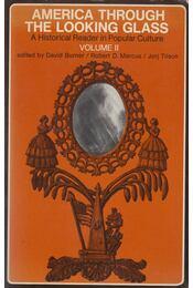 America Through the Looking Glass Vol. II. - David Burner, Robert D Marcus, Jorj Tilson - Régikönyvek