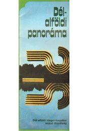 Dél-alföldi panoráma - Régikönyvek