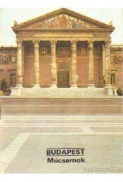 Budapest - Műcsarnok - Dercsényi Balázs - Régikönyvek