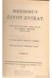Brehmuv zivot zvírat VII. - Dr. Meyer, Adolf - Régikönyvek
