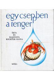 Egy cseppben a tenger - Richter Ilona - Régikönyvek