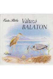 Változó Balaton - Entz Béla - Régikönyvek