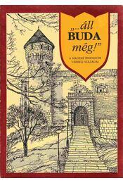 """""""...áll Buda még!"""" - Erki Edit - Régikönyvek"""