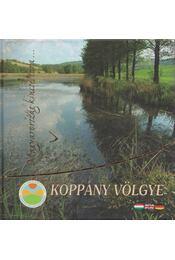 Koppány völgye - Farkasné Szabó Ildikó - Régikönyvek