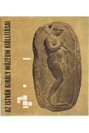 Az István Király Múzeum állandó kiállításának vezetője - Fitz Jenő - Régikönyvek