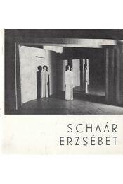 Schaár Erzsébet - Fitz Jenő - Régikönyvek