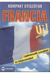 Kompakt útiszótár - francia - Péan, Michael, Mike Hillenbrand, Sövényházy Edit - Régikönyvek