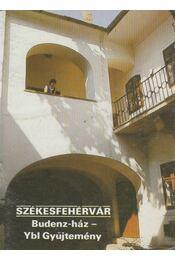 Székesfehérvár - Budenz-ház - Ybl Gyűjtemény - Füzes Endre - Régikönyvek